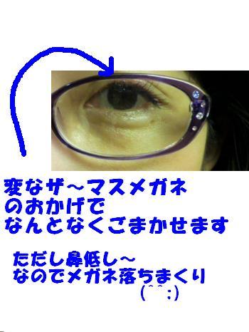 P1010070_convert_20110414133220.jpg