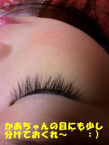 P1010072_convert_20110505131248.jpg