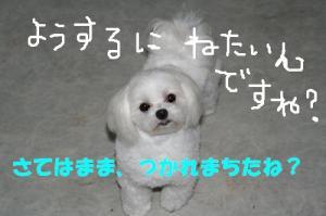 20070523011932.jpg