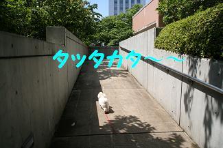 20070610212900.jpg