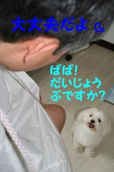 20070703110044.jpg
