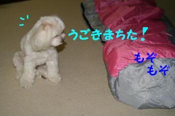 20070712162704.jpg