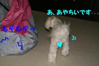 20070712163000.jpg
