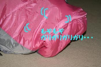 20070712164627.jpg
