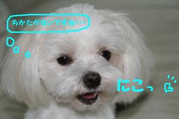 20070714153203.jpg