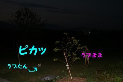 20070821140735.jpg