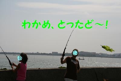 20070903191405.jpg