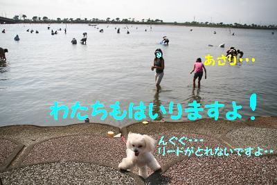 20070903211532.jpg