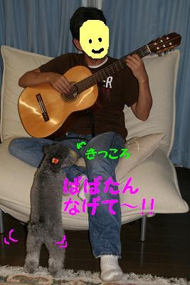 20070913214211.jpg