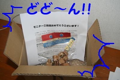 20070921165812.jpg