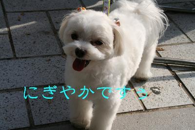 20071010221306.jpg
