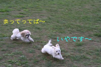 20071016155956.jpg