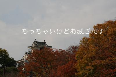 20071123180021.jpg