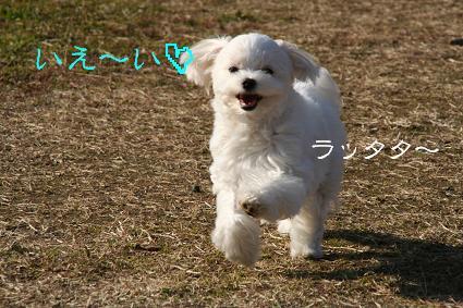 20080109220315.jpg