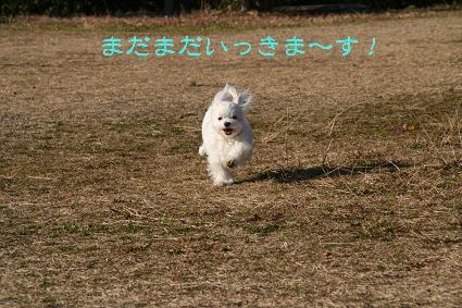 20080109220500.jpg