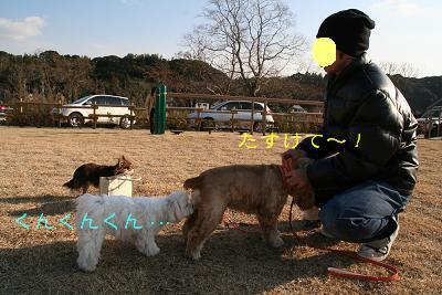 20080120235509.jpg
