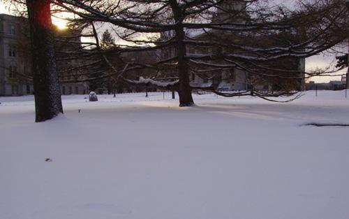 Wintershadow