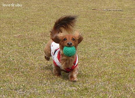 ボール遊び('11.04)①