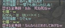 20070128095451.jpg