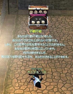20070507165819.jpg