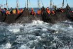 tuna wars