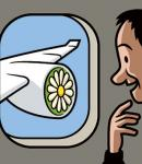 グリーンハウス航空