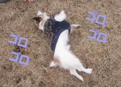 200802114.jpg