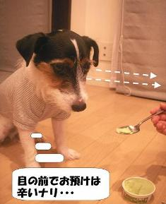 tsurainari.jpg