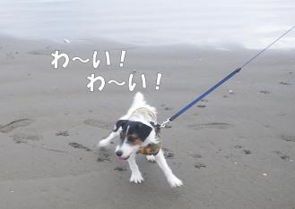 umidayo4.jpg