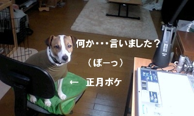 PA0_0030.jpg