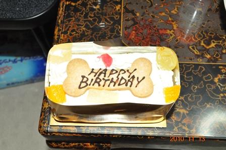 ルナ2歳誕生日プレゼント