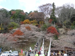 川見薬師寺さんへの階段