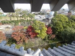 本丸丑寅櫓の2階からの景色