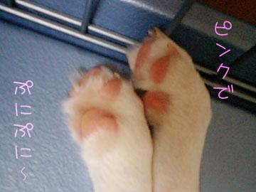 20070908-01.jpg