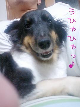20071014-01.jpg