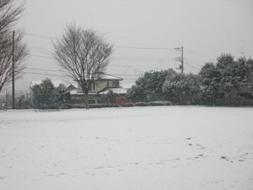 20080124-04.jpg