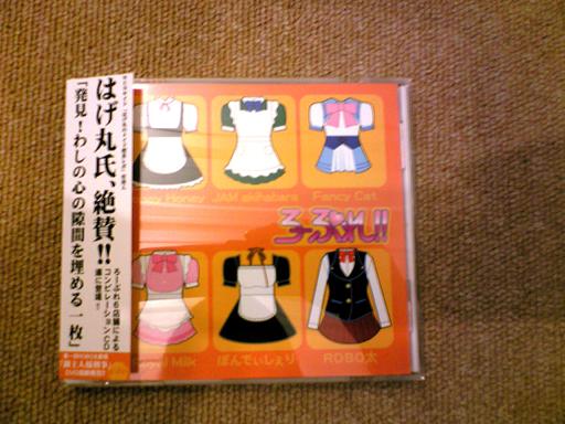 hani2008012001.jpg
