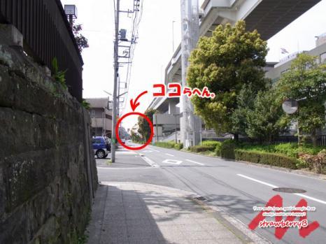20110411_002.jpg