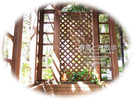 20110509_002.jpg