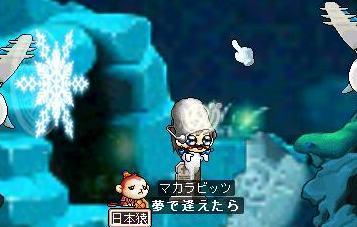 Maple0591a.jpg