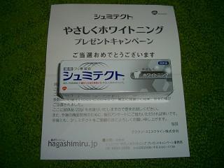 2011_08080001.jpg