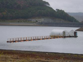 20071101F.jpg