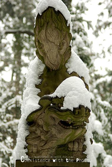雪降る神社02