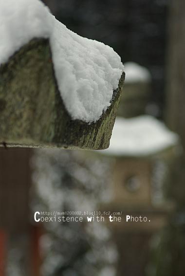雪降る神社06