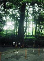 伊勢神宮2010木