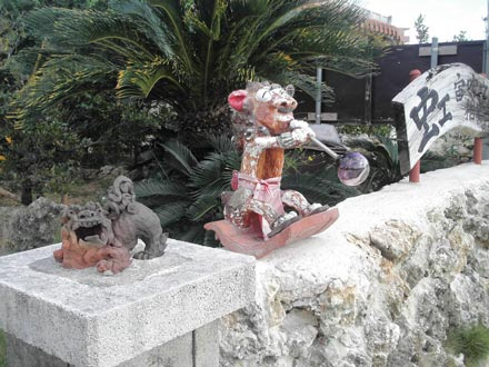 沖縄-コウボウニジ