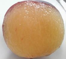 皮をむくと、果汁が豊富で<br /><br /> 果肉もこんなにきれいです。
