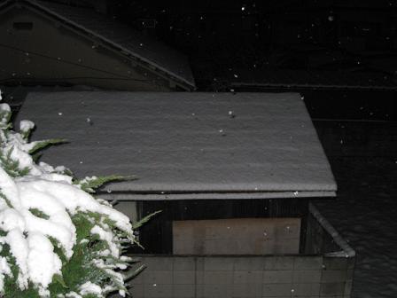 snowww.jpg
