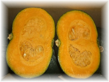 かぼちゃ-2