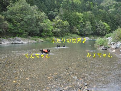 b2011 05 07_6843